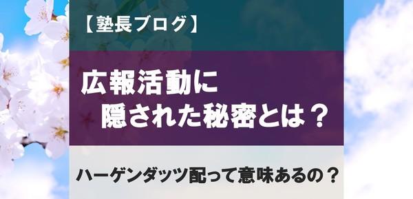 桜学ゼミの広報活動の秘密とは!?